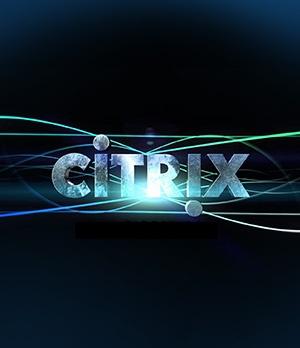 citrix-search.jpg